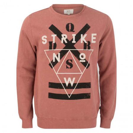 SALE % | Q/S designed by | Sweater - Regular Fit - Print | Rosa online im Shop bei meinfischer.de kaufen