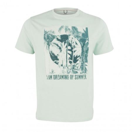 SALE % | Boss Casual | T-Shirt - Regular Fit - Print | Grün online im Shop bei meinfischer.de kaufen
