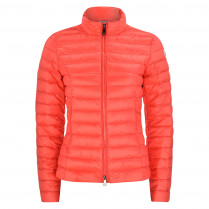 Daunenjacke - Regular Fit - Belarus