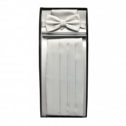 Set - Fliege-Einstecktuch-Schal online im Shop bei meinfischer.de kaufen